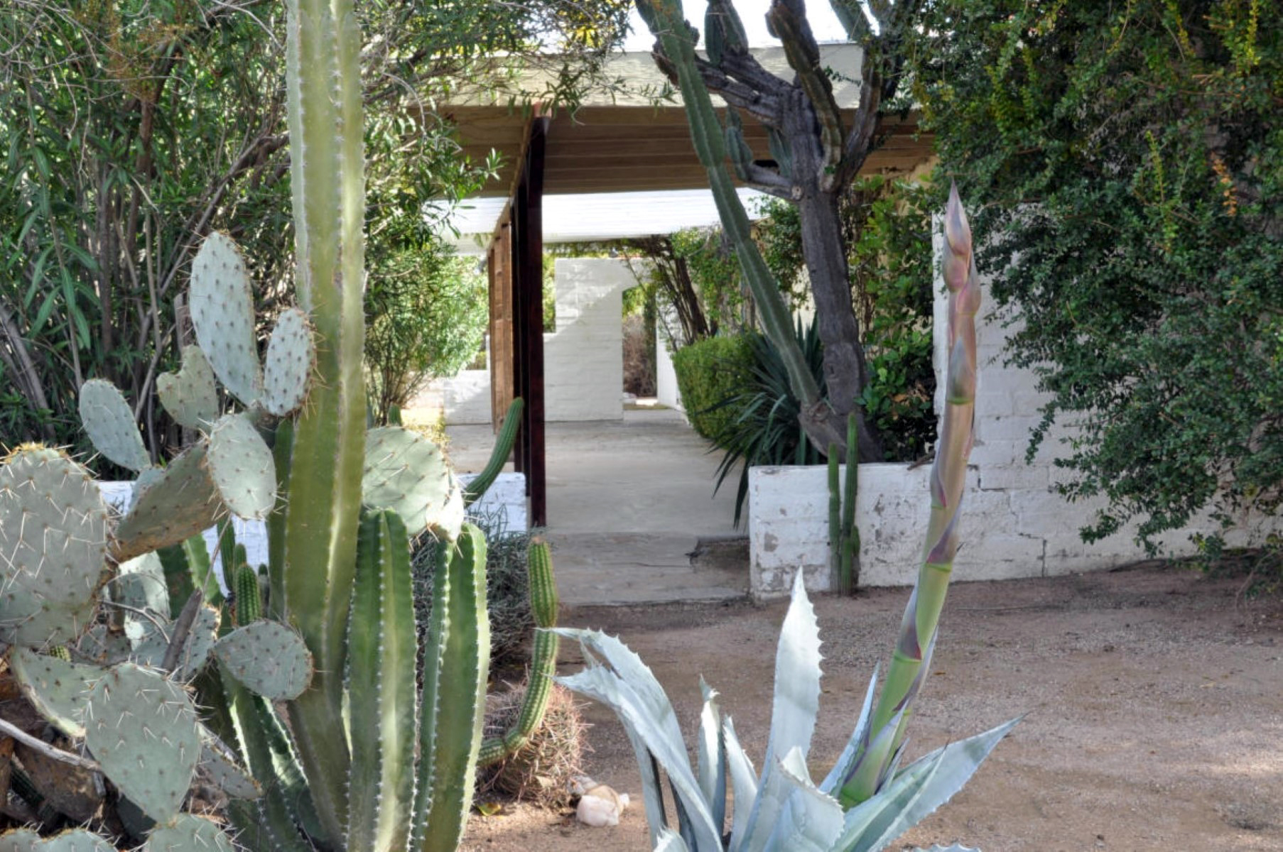 Vivienda unifamiliar por un Venta en Extremely Private Paradise Valley Location with Great Camelback Mountain Views 6025 E Lincoln Drive Paradise Valley, Arizona 85253 Estados Unidos