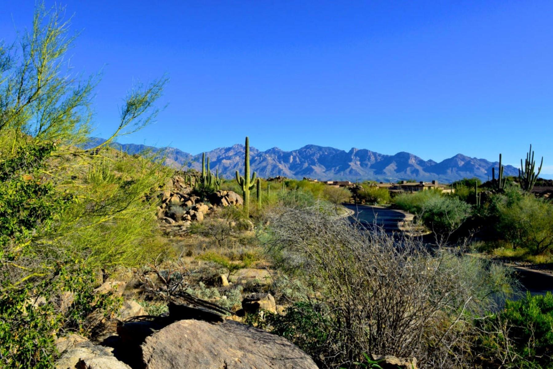 Terreno por un Venta en Truly Awesome Stone Canyon View Lot 1197 W Tortolita Mountain Circle #188 Oro Valley, Arizona 85755 Estados Unidos