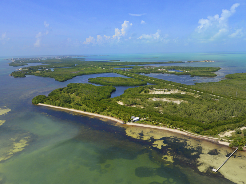 Terrain pour l Vente à Private Beach Acreage in the Florida Keys 57290 Overseas Highway Marathon, Florida 33050 États-Unis