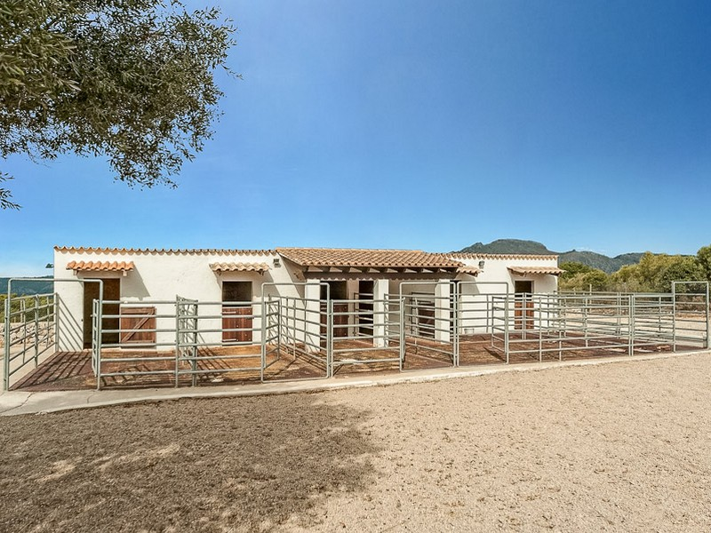 Property Of Country Estate with sea views and stable Son Font