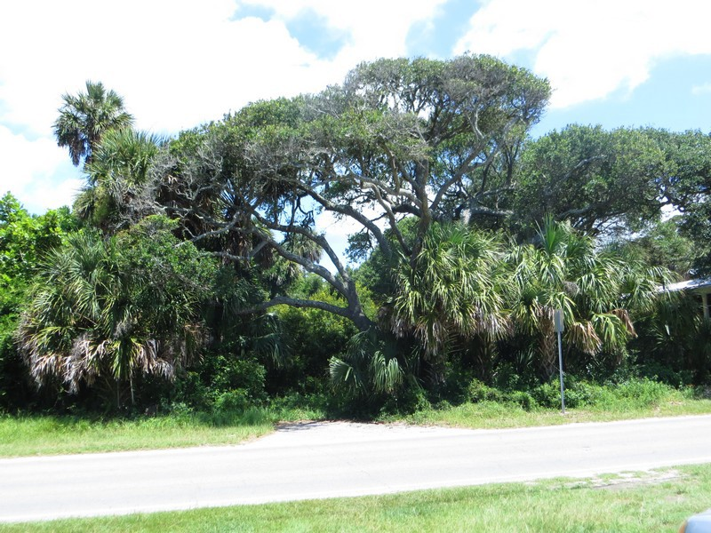 Land for Sale at Residential Lot with Ocean Views 710 W Ashley Avenue Folly Beach, South Carolina 29439 United States