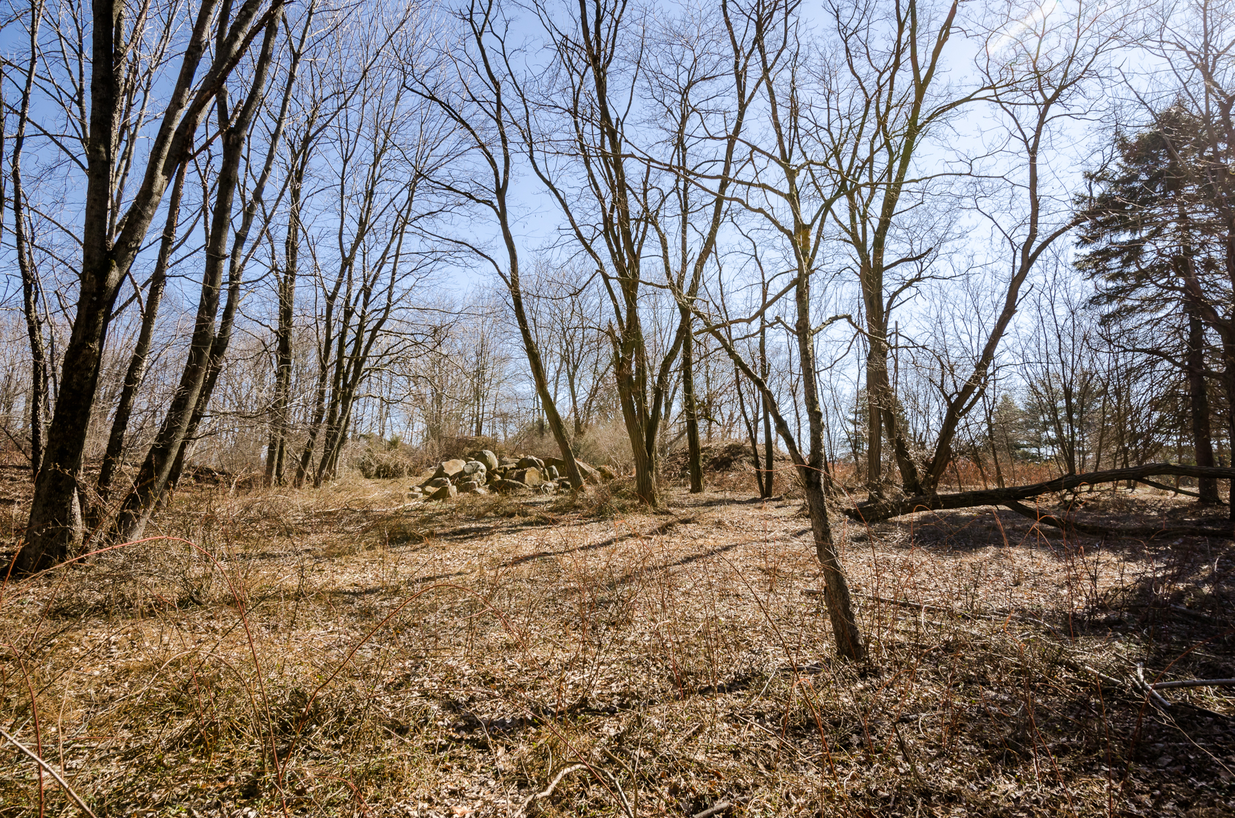 sales property at Beautiful Building Lot -Montgomery Township