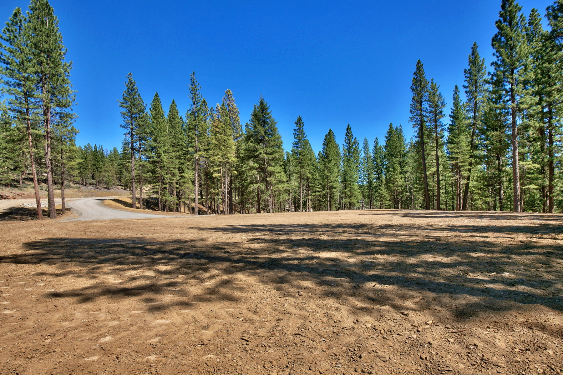 Additional photo for property listing at 249 Tantau Ranch Road  Clio, California 96106 United States