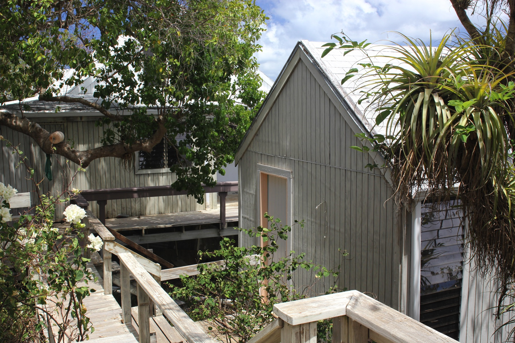 Casa multifamiliare per Vendita alle ore Camanoe Tree Tops Indigo Plantation, Great Camanoe Isole Vergini Britanniche