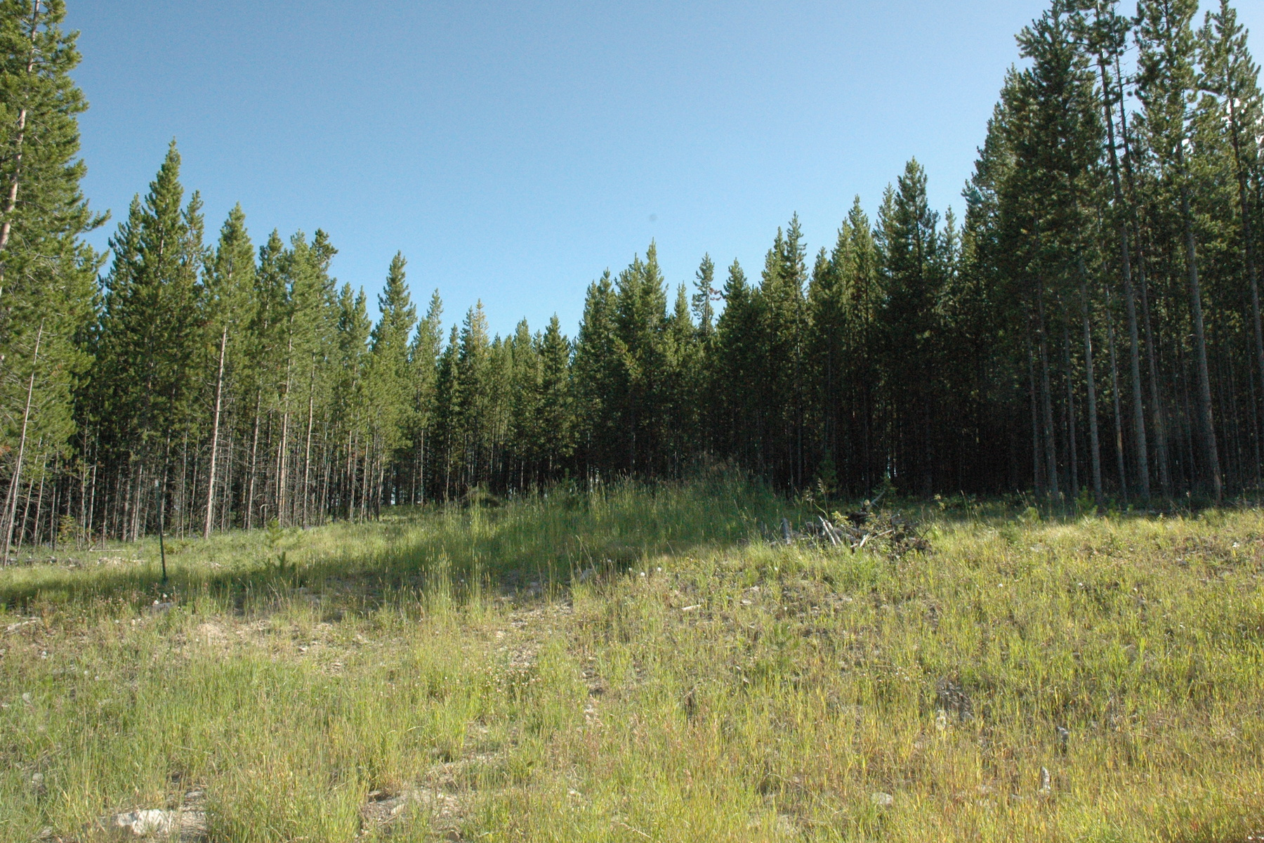 Property Of Spanish Peaks North Homesite