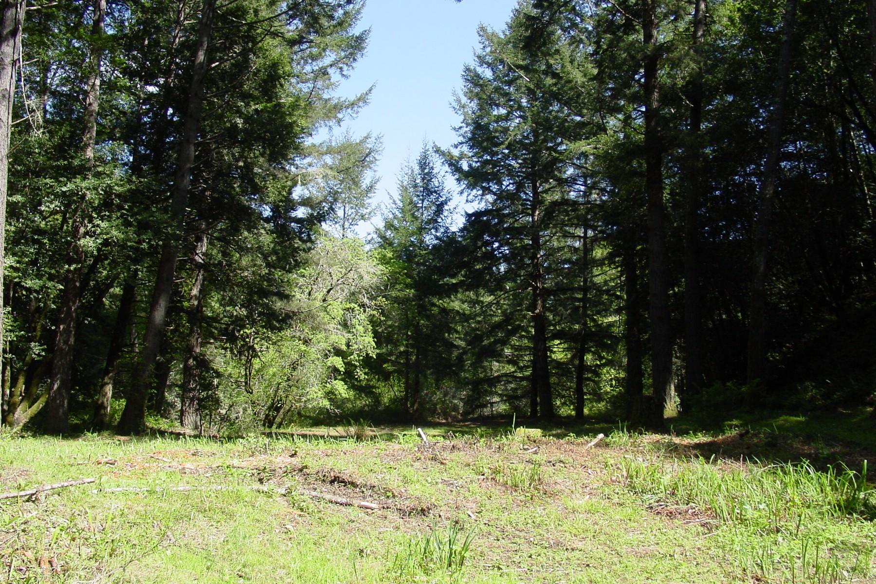 Terreno por un Venta en Refuge and Retreat 222 Camino Margarita Nicasio, California 94946 Estados Unidos