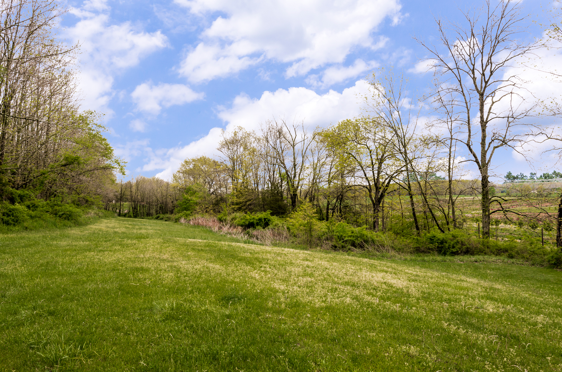 Additional photo for property listing at Scenic Views That Stretch For Miles - Delaware Township 110 Dunkard Church Road 斯托克顿市, 新泽西州 08559 美国