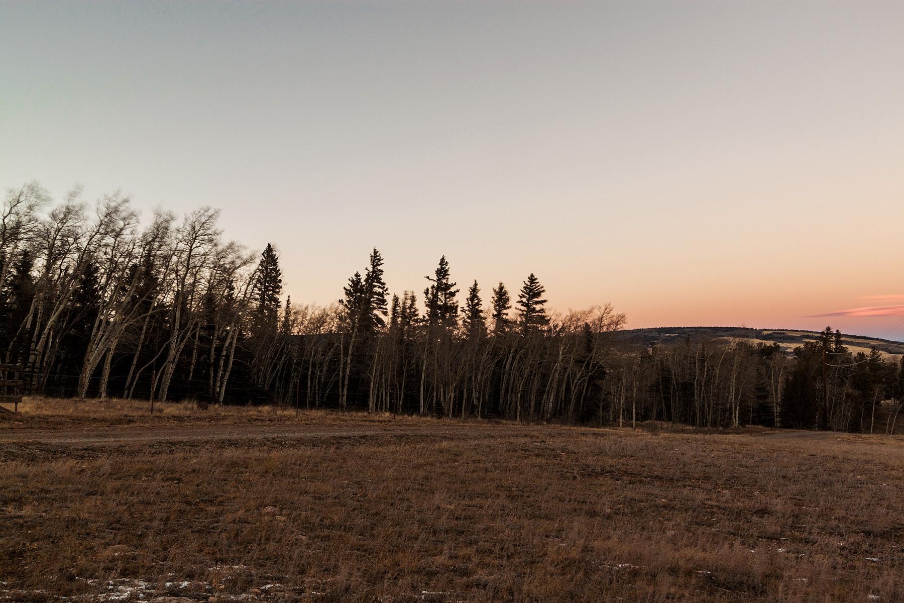 Property Of 89 Sheep Creek Trail