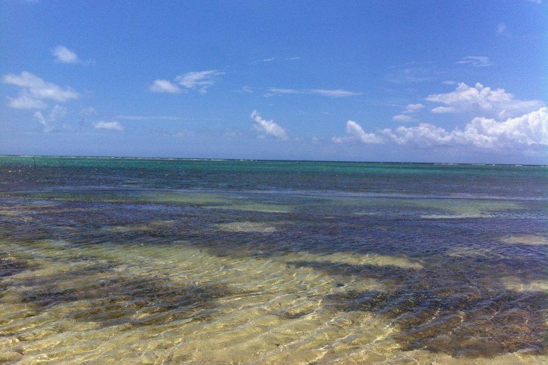 Terreno por un Venta en LOTES CON FRENTE DE PLAYA EN XCALAK Beachfront Lots in Xcalak Lote número OCHO y NUEVE Xcalak, Quintana Roo 77940 México