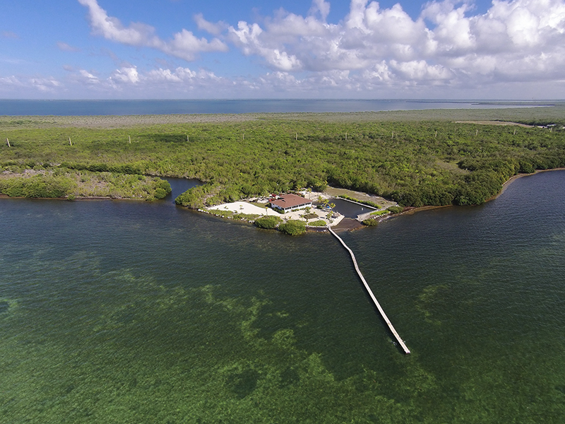 Single Family Home for Sale at Old Florida Charm Estate 11175 County Road Key Largo, Florida, 33037 United States