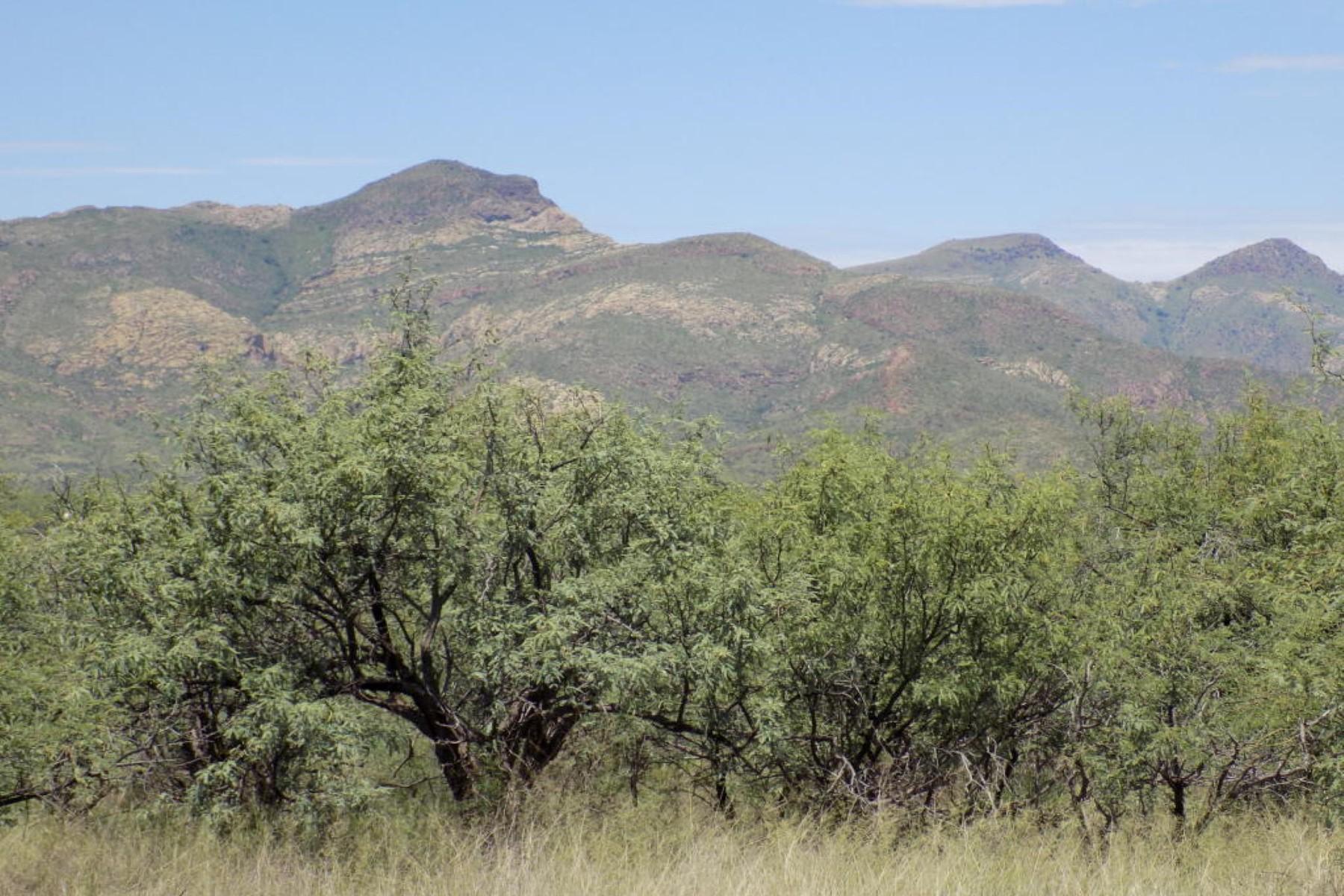 Land for Sale at Wonderful 84.04 acre lot. TBD RIO RICO Rio Rico, Arizona, 85648 United States