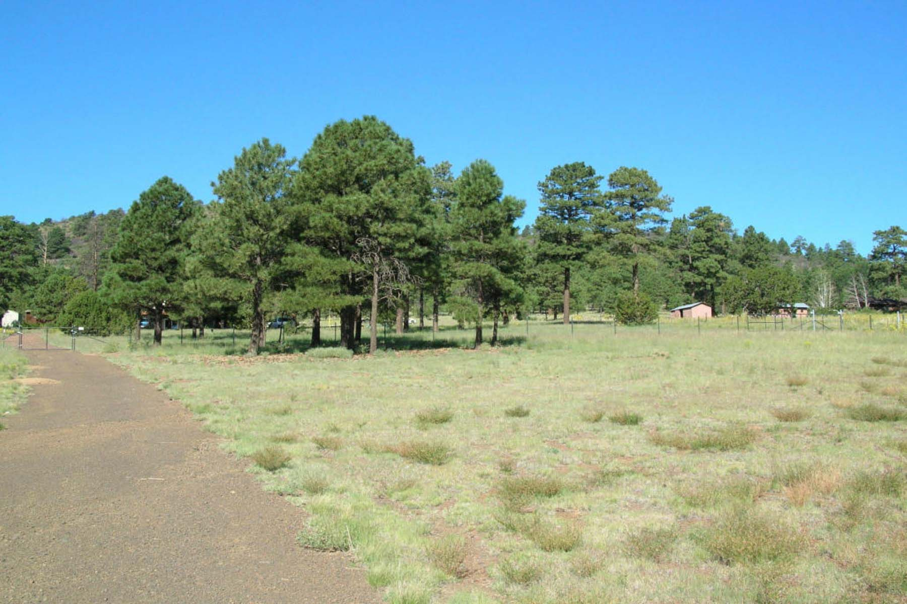 Land for Sale at Wonderful Horse property just waiting for your dream home. 8596 N Slayton Ranch RD Flagstaff, Arizona 86004 United States