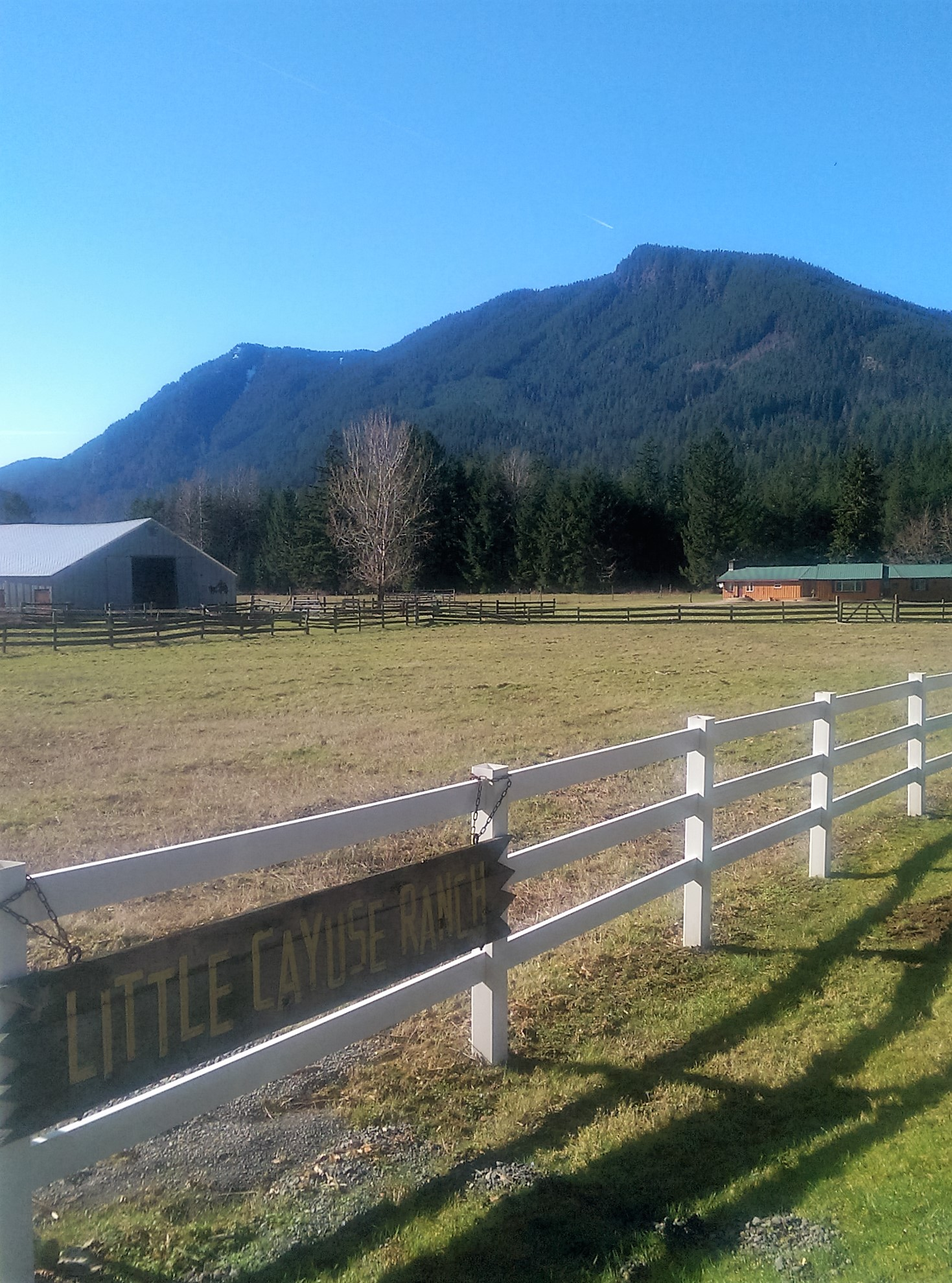 Farm / Ranch / Plantation for Sale at Little Cayuse Ranch 171 Baker Road Randle, Washington 98377 United States