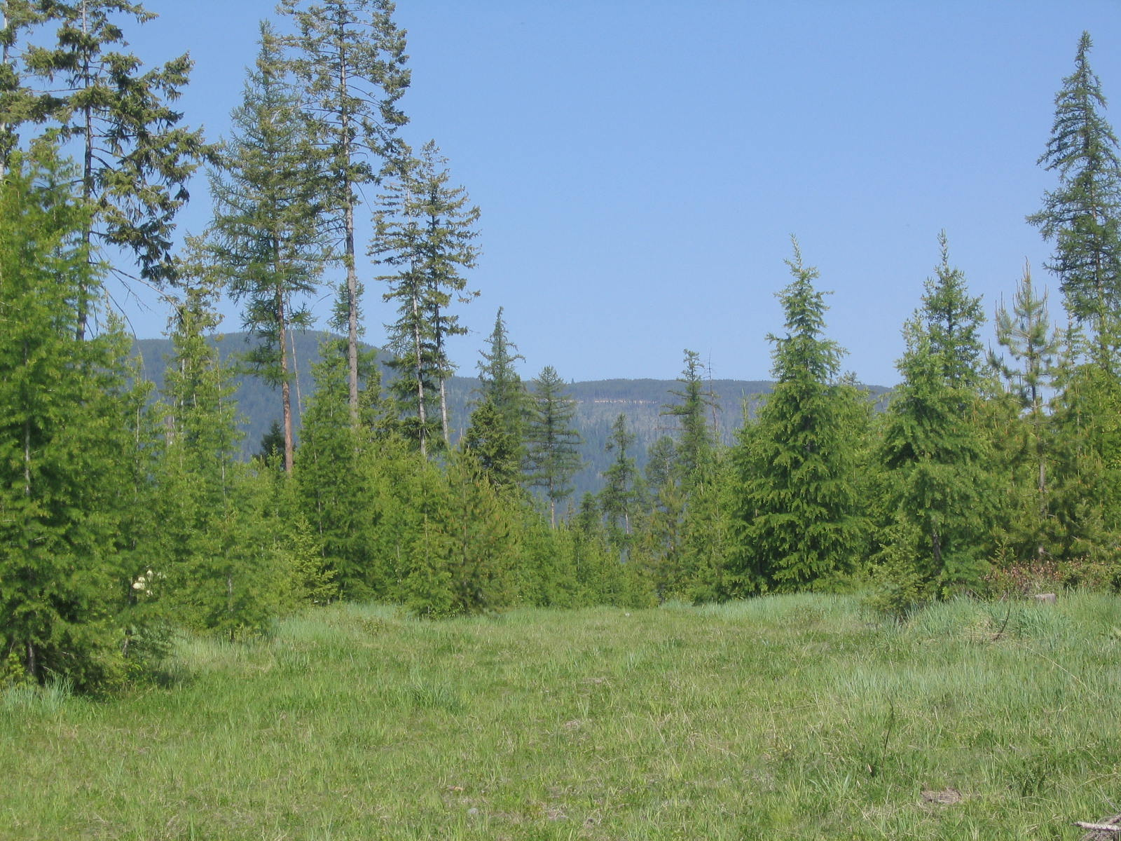 Property For Sale at Mountain and Meadow