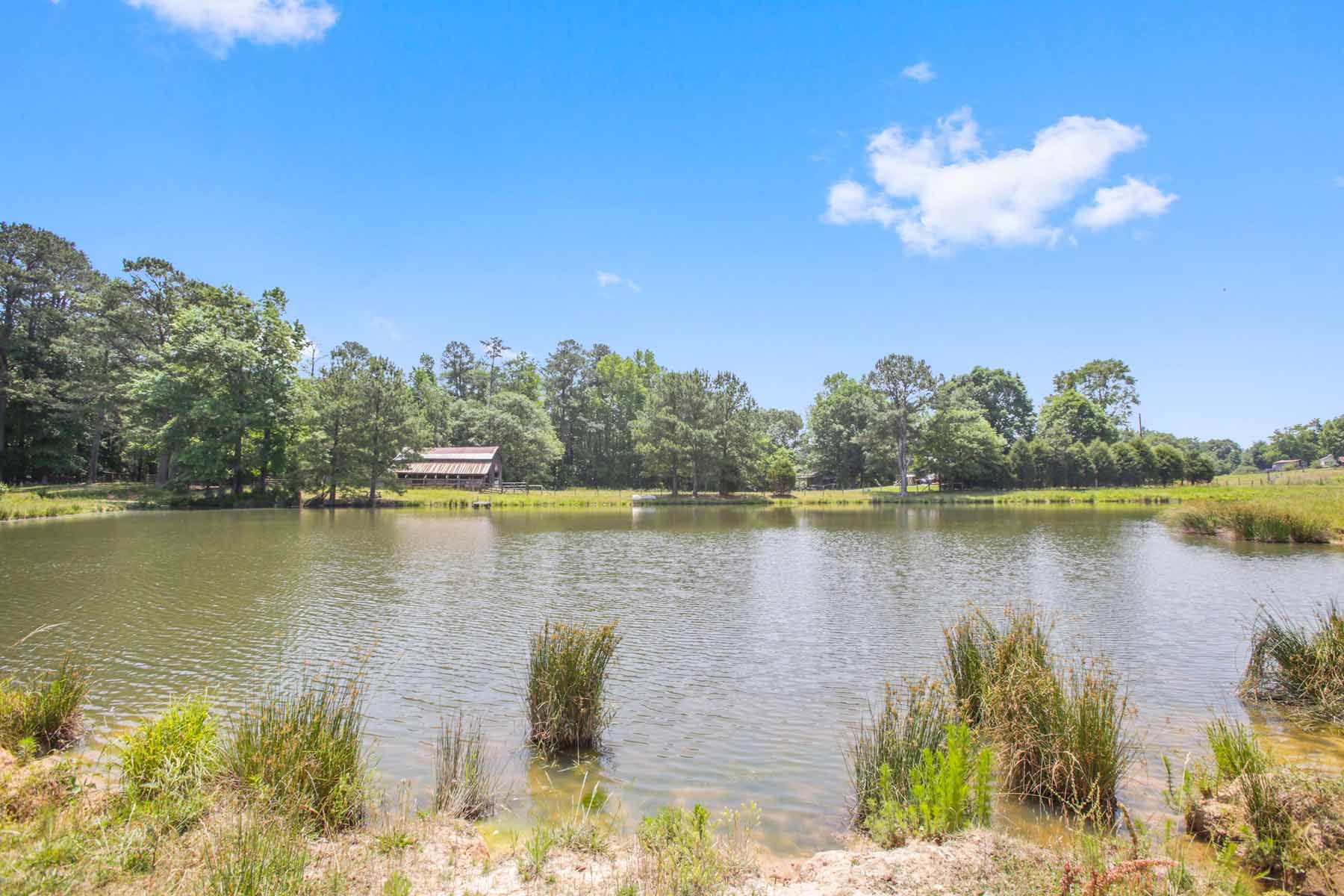 Additional photo for property listing at Rolling Pastures With Ponds and Beautiful Hardwoods 7770 Jones Ferry Road Chattahoochee Hills, Джорджия 30268 Соединенные Штаты