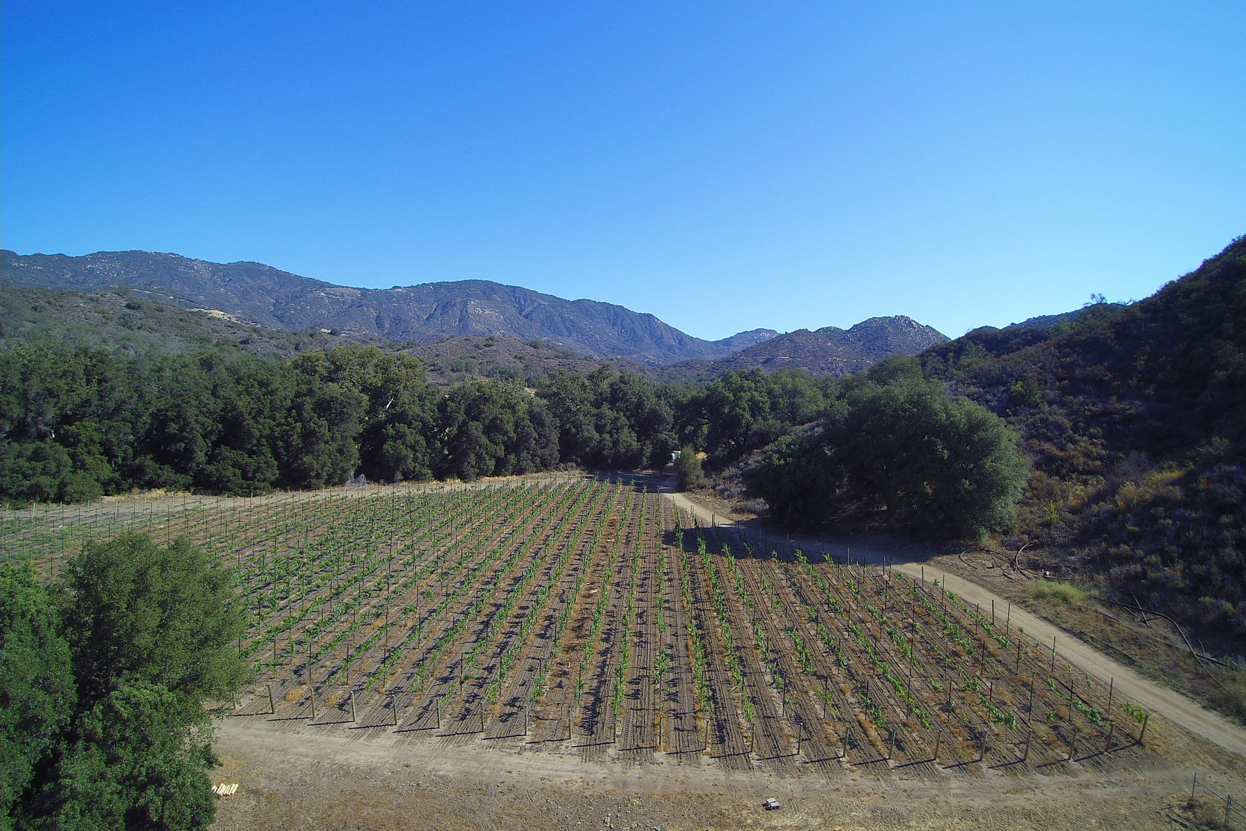 Additional photo for property listing at Peaceful Oaks Ranch Vineyard 40550 De Luz Murrieta Road Fallbrook, Калифорния 92028 Соединенные Штаты