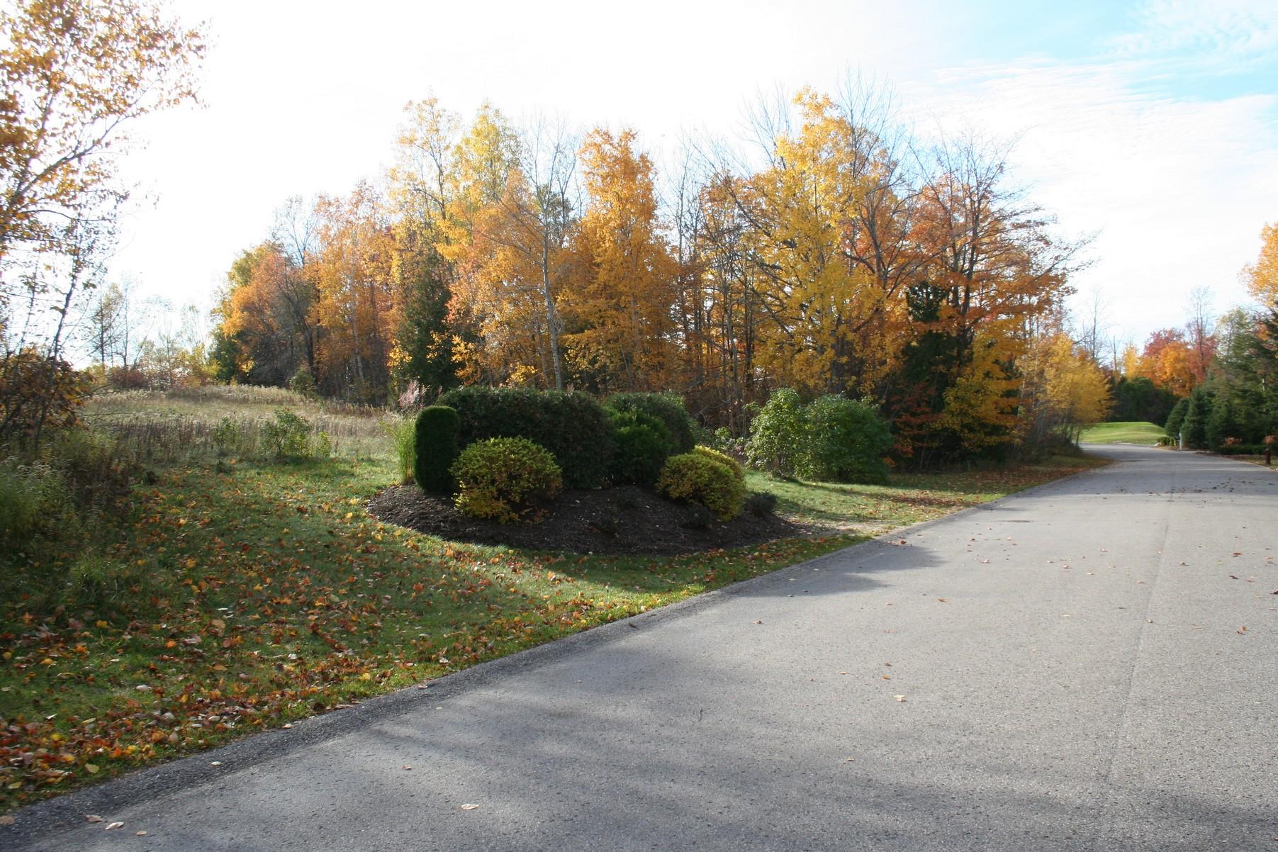Land for Sale at Coastal Cliffs 19 6053 Coastal Cliffs Bay Harbor, Michigan, 49770 United States