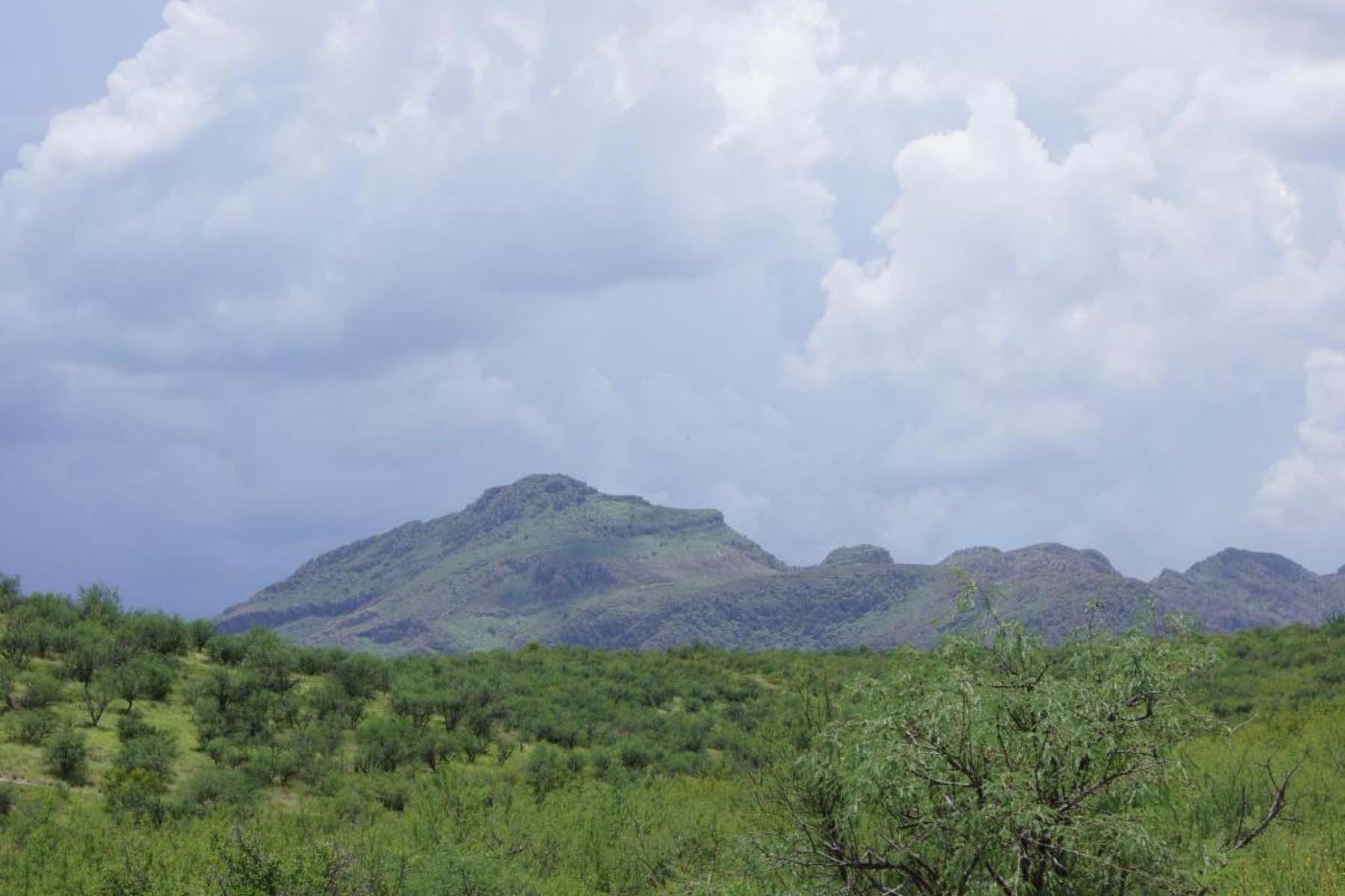 Terreno por un Venta en Beautiful portion of land with amazing mountain views. Parcel 4 Vista de Torres #4 Tubac, Arizona 85646 Estados Unidos