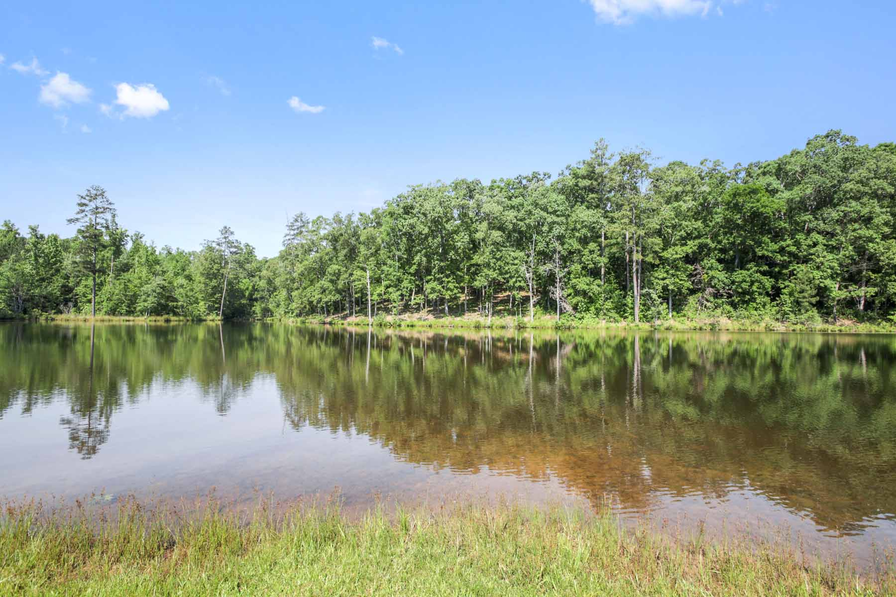 Additional photo for property listing at Create your getaway just around the corner from the Serenbe community! 10873 Hutcheson Ferry Road Chattahoochee Hills, Geórgia 30268 Estados Unidos