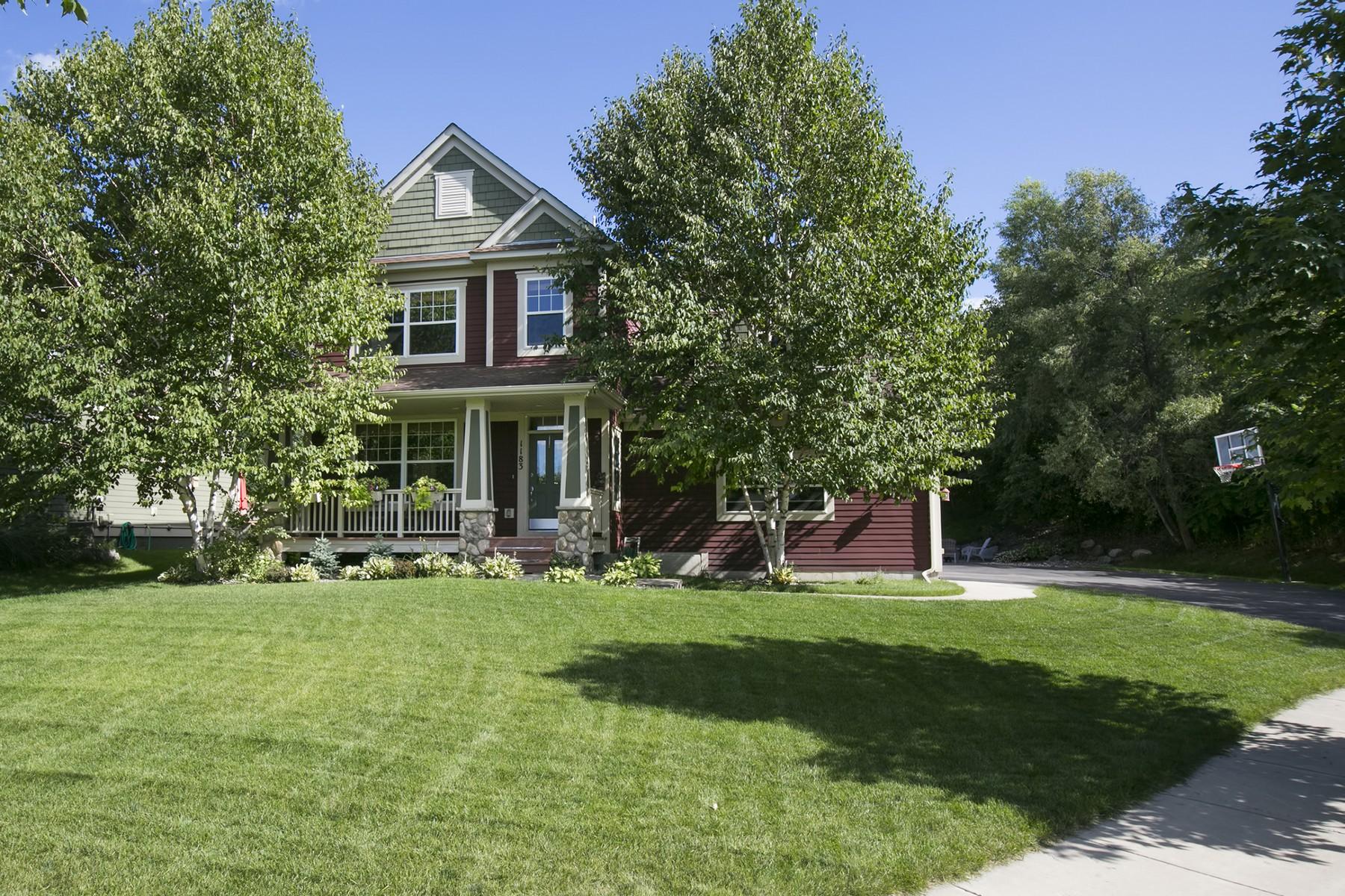 Single Family Home for Sale at 1183 Savanna Trail Victoria, Minnesota 55386 United States