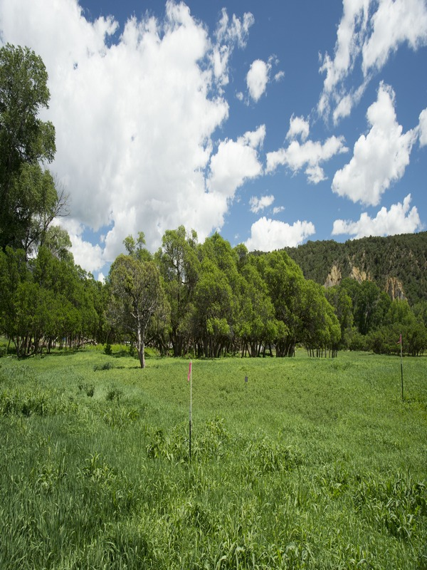 Land for Sale at The Future of Colorado Living 16411 Old Hwy 82 Lot # 21 Carbondale, Colorado 81623 United States