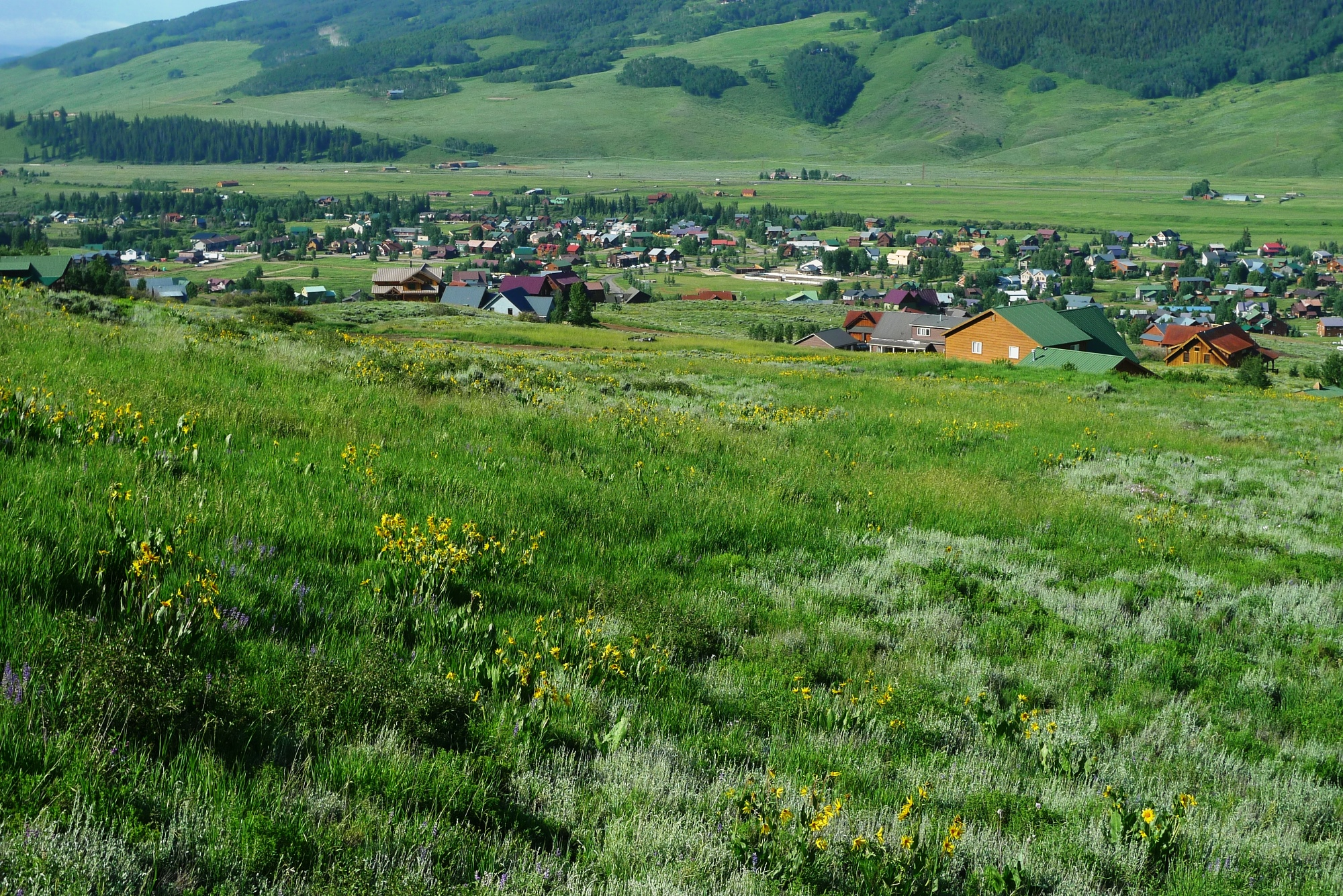 Land for Sale at Spectacular Views 340 Neville Way Lot 40 Crested Butte, Colorado 81224 United States