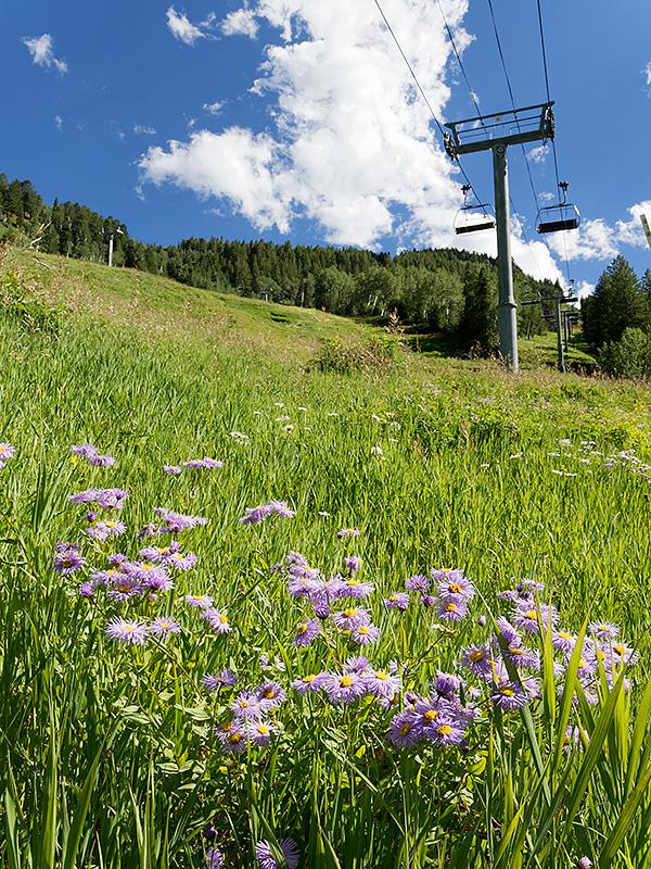 Single Family Home for Sale at Brand Mountain Modern Ski Home 235 Exhibition Lane Aspen, Colorado 81611 United States