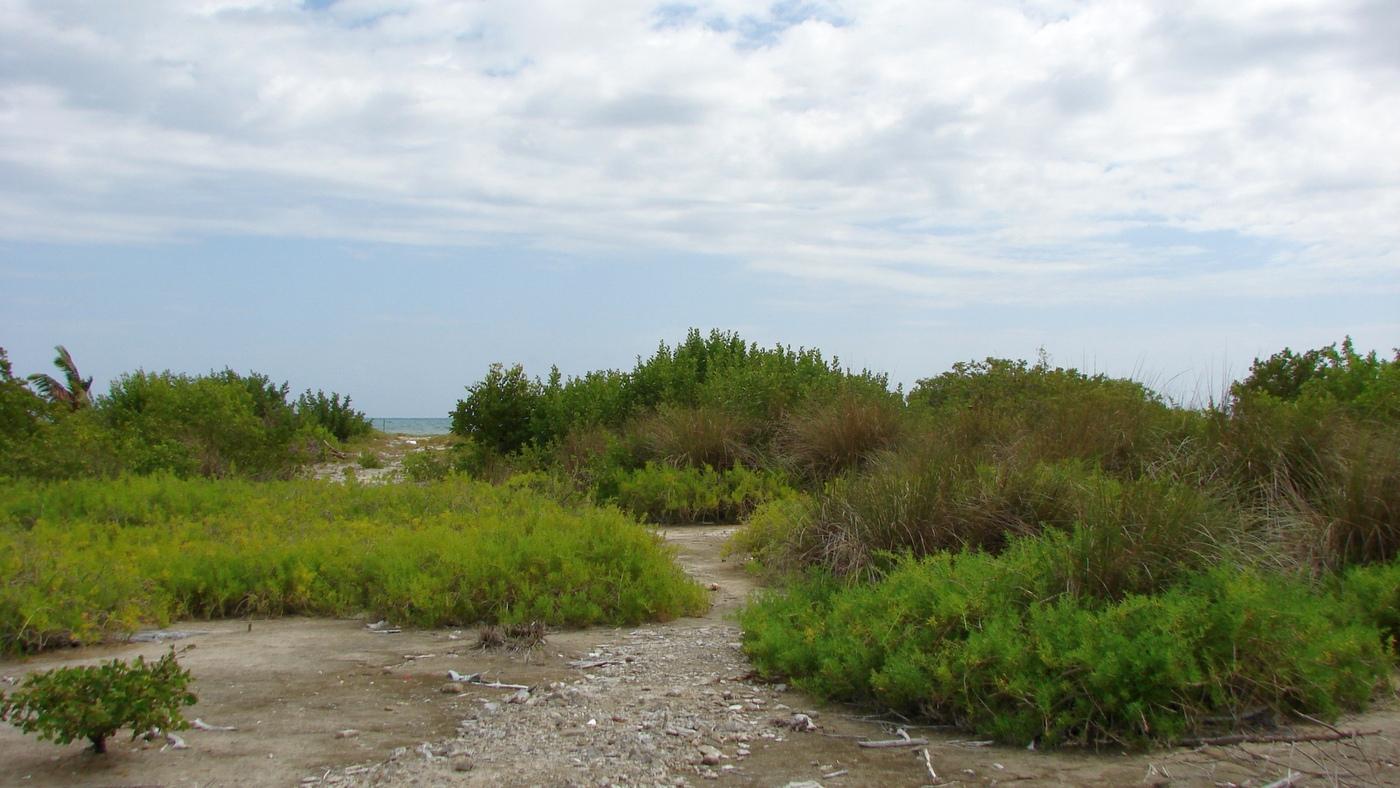 Land für Verkauf beim North Caye Caulker Caye Caulker, Belize, Belize