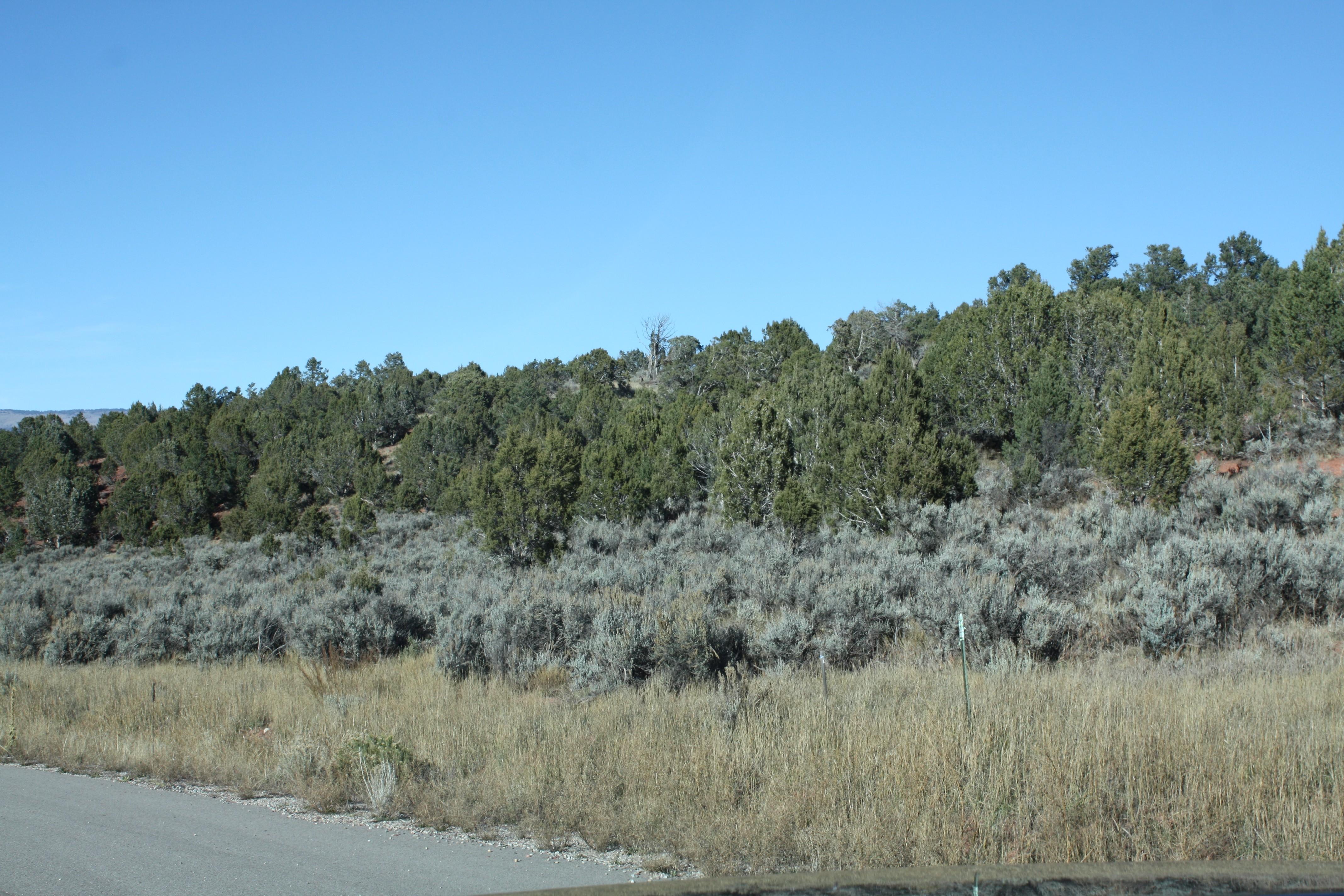 Land for Sale at Lot 58 Springridge Reserve Lot 58 Hidden Valley Glenwood Springs, Colorado, 81601 United States