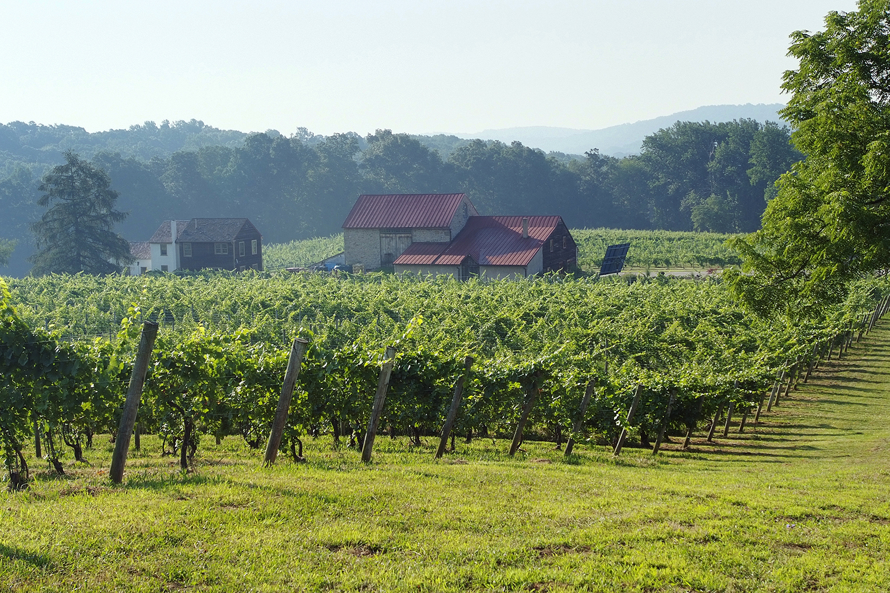 sales property at French Creek Ridge Vineyards