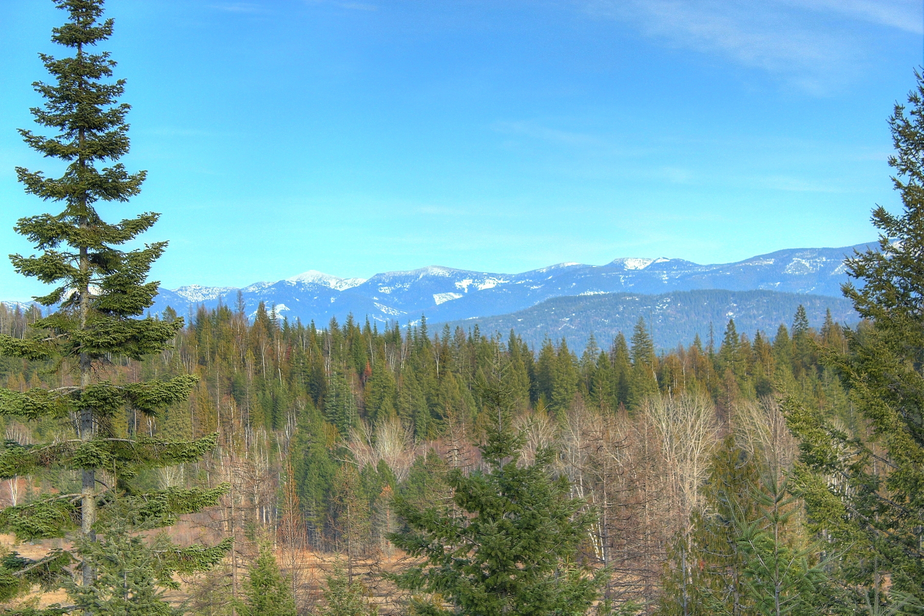 Land for Sale at Beautiful Hidden Valley Estate NNA HIDDEN VALLEY Sandpoint, Idaho, 83864 United States