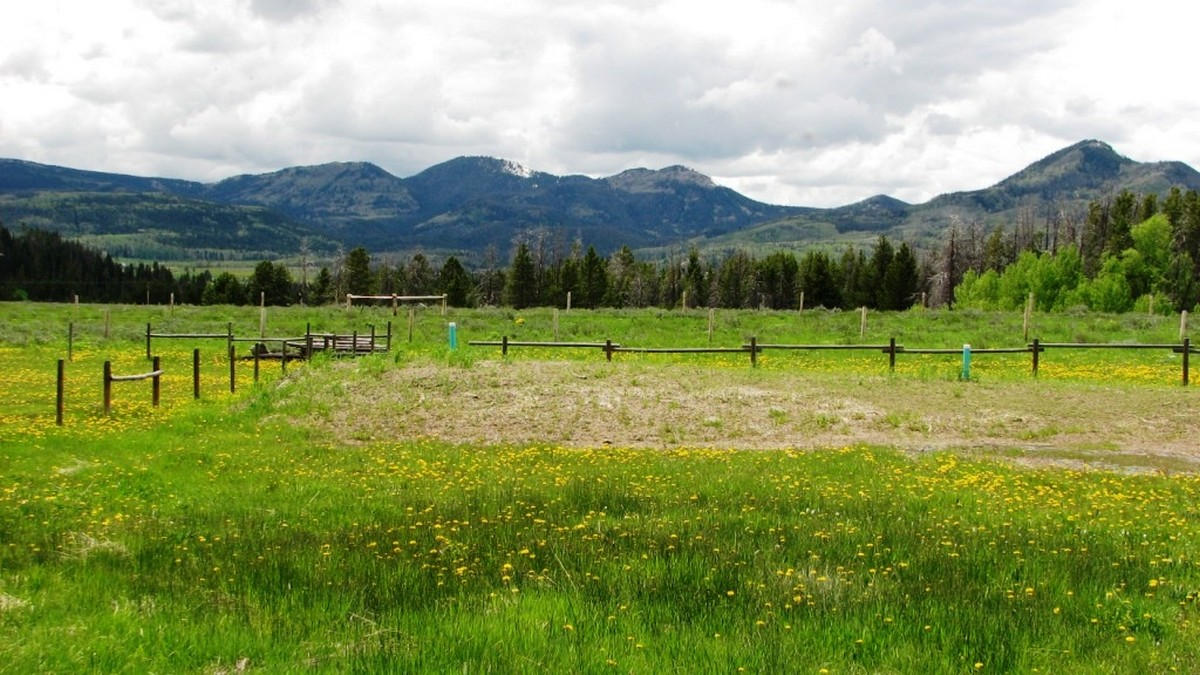 Land for Sale at Exceptional Views TBD Placer/Main Street Clark, Colorado 80428 United States