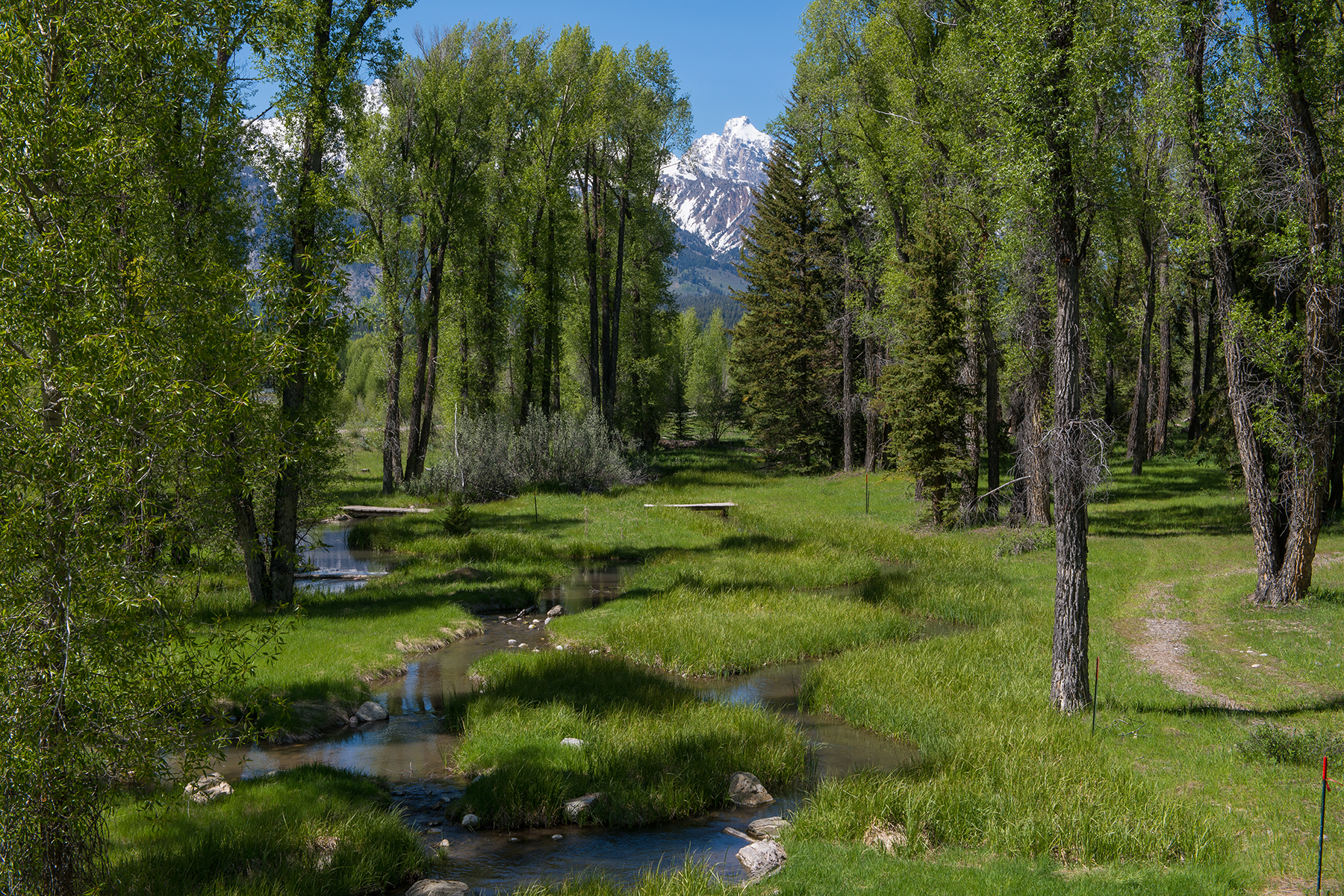 Land for Sale at 100 Spectacular Acres on the Snake River 7585 N Bar B Bar River Road Jackson, Wyoming, 83001 Jackson Hole, United States