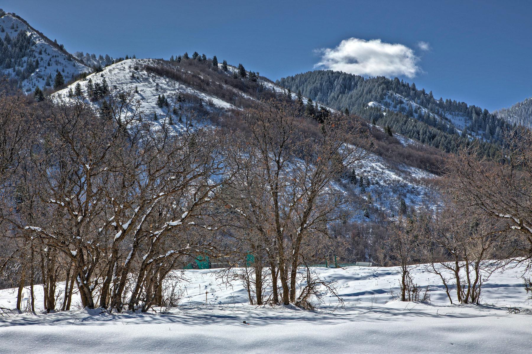 Terreno por un Venta en Over One Acre in Woodland Hills 75 E Deer Meadow Lot 95 Woodland Hills, Utah, 84653 Estados Unidos