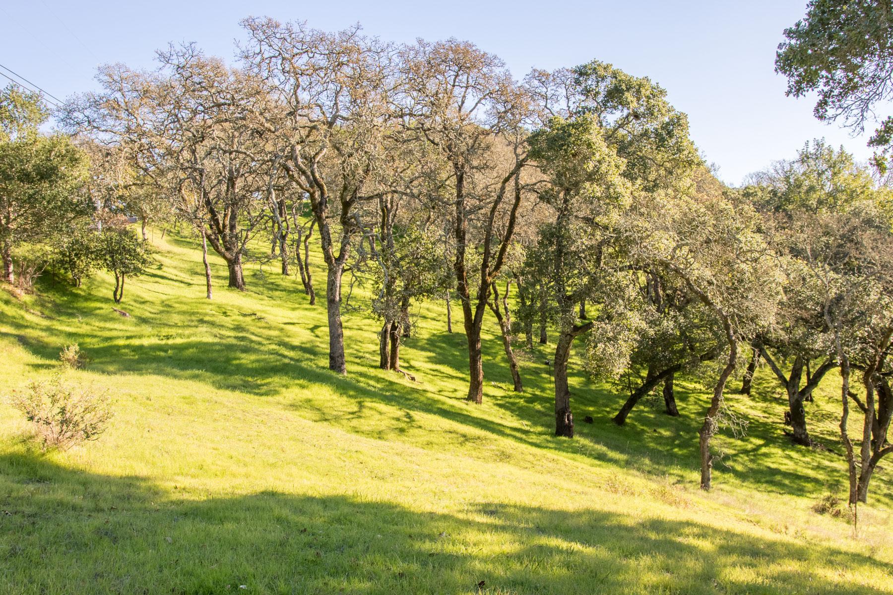 토지 용 매매 에 Vacant Lot in Greenpoint APN 143-370-42 Novato, 캘리포니아, 94947 미국