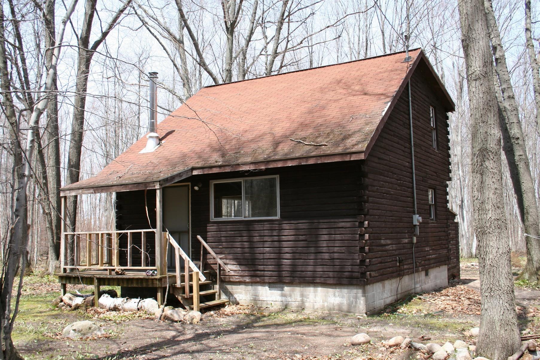 Casa para uma família para Venda às Wilderness - O'Neal Lake 11753 Ellis Road Levering, Michigan, 49755 Estados Unidos