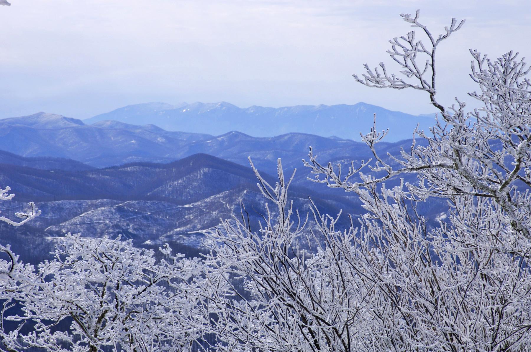 Land for Sale at Eagles Nest Lodge Homesite 47 Lot L-47 Eagles Cliff Trail Banner Elk, North Carolina 28604 United States