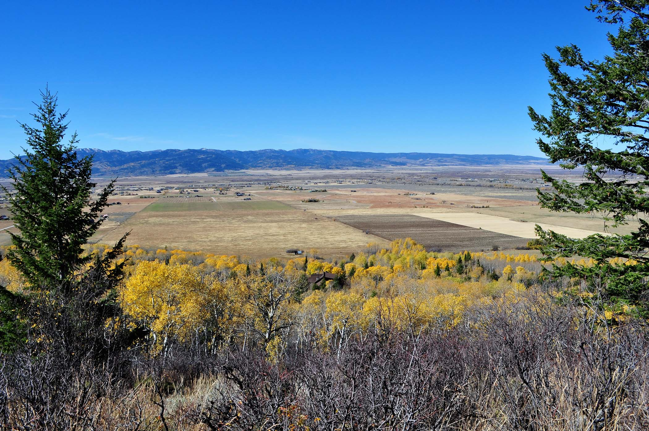 sales property at Elevated and Treed View Lot in Victor