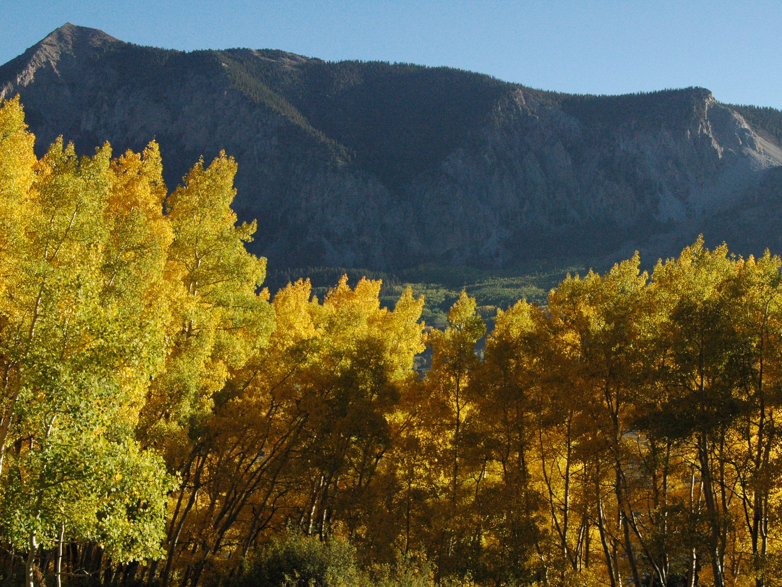 Land for Sale at Tbd Hidden Mine Ranch Road Crested Butte, Colorado 81224 United States