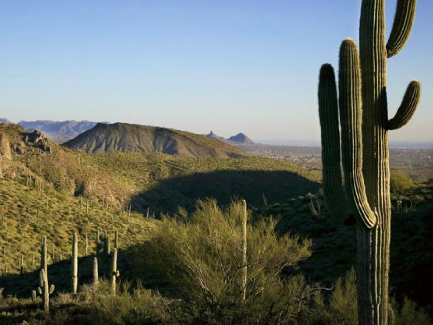Terreno para Venda às Gorgeous Views from this 3.48 Acre Desert Mountain Homesite 9179 E Grapevine Pass #334 Scottsdale, Arizona 85262 Estados Unidos