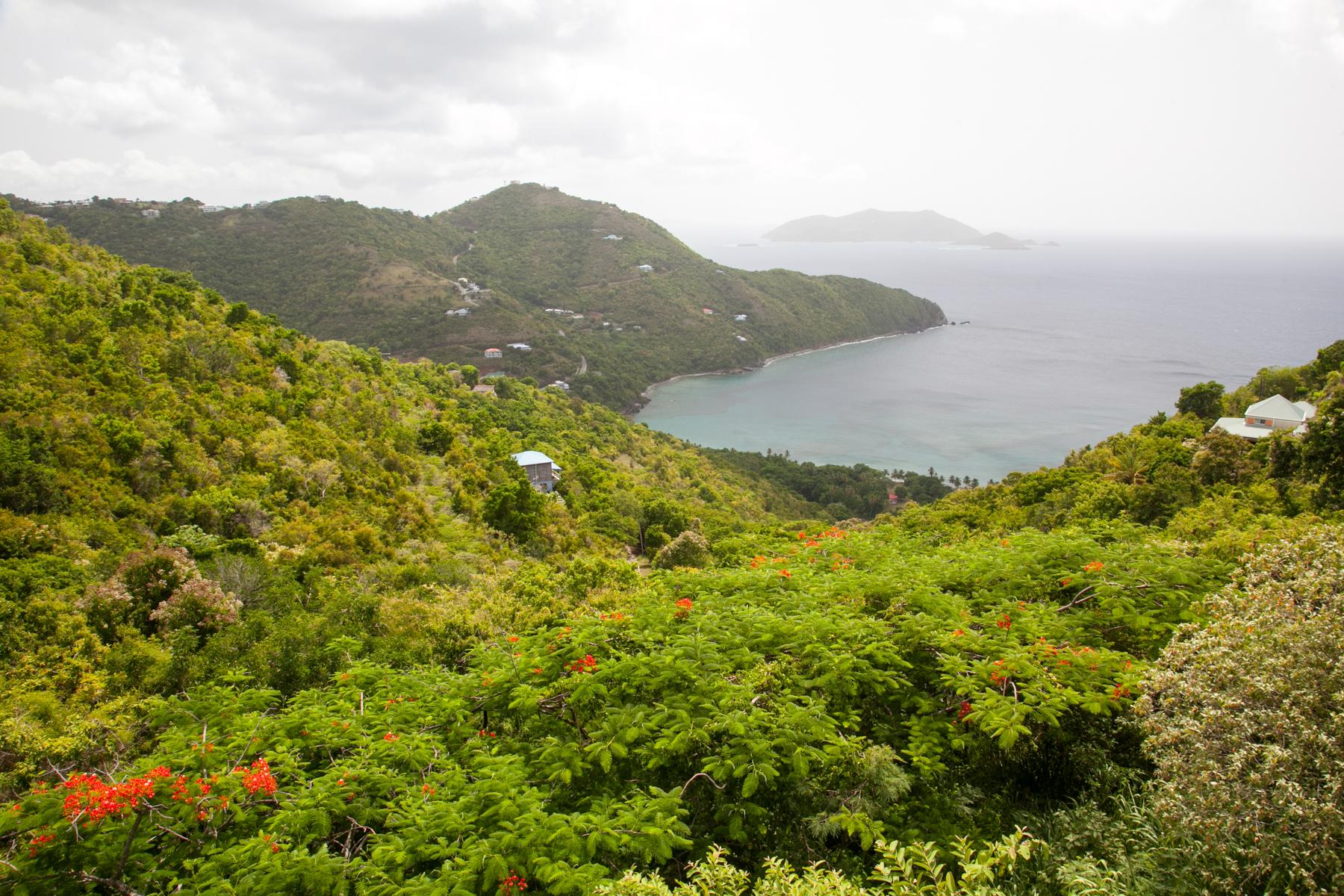 Arazi için Satış at Brewer's Bay Land Other Tortola, Tortola, Ingiliz Virgin Adalari