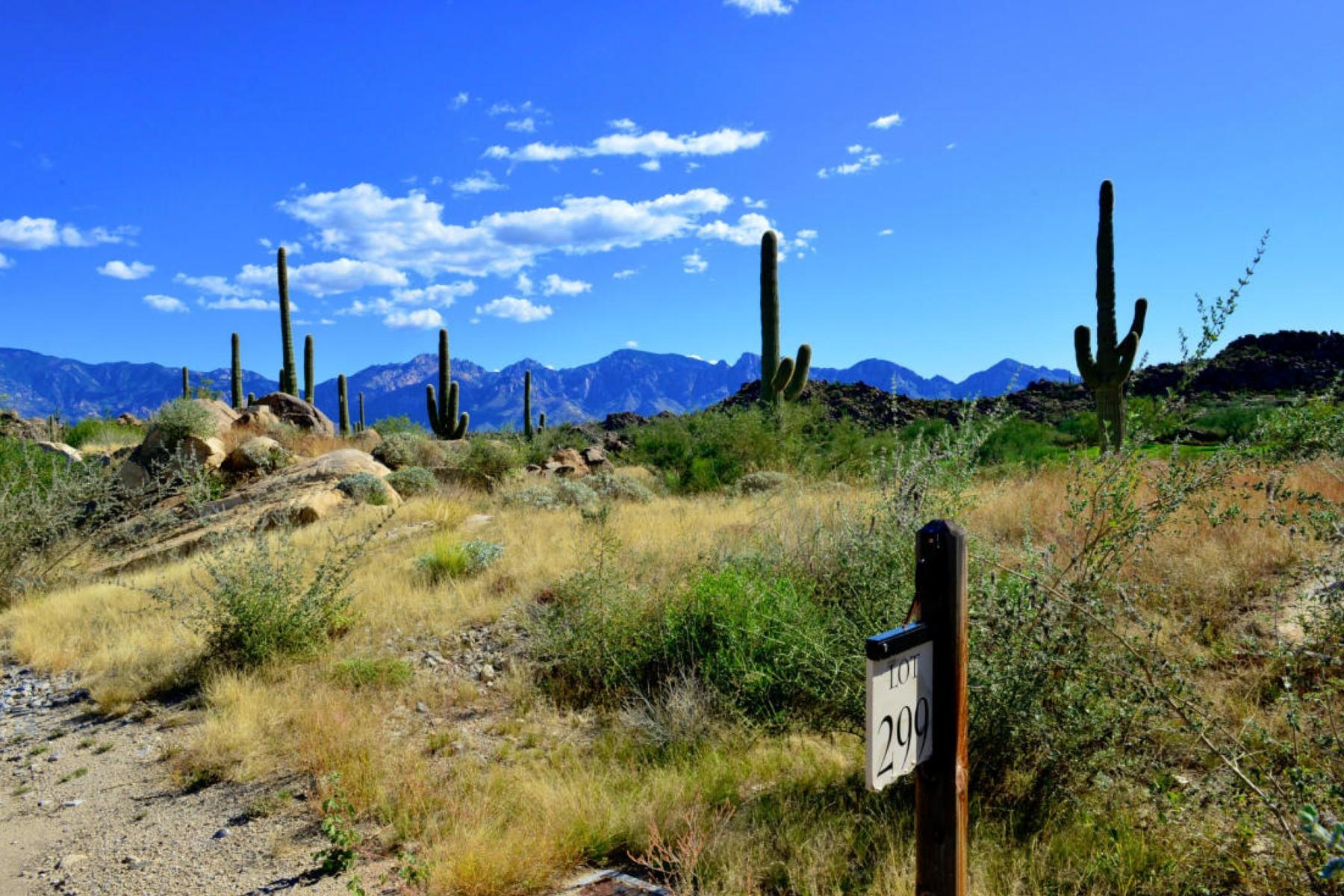 Земля для того Продажа на Panoramic Catalina Mountain And Golf Course Views 1452 W Tortolita Mountain Circle #299 Oro Valley, Аризона 85755 Соединенные Штаты