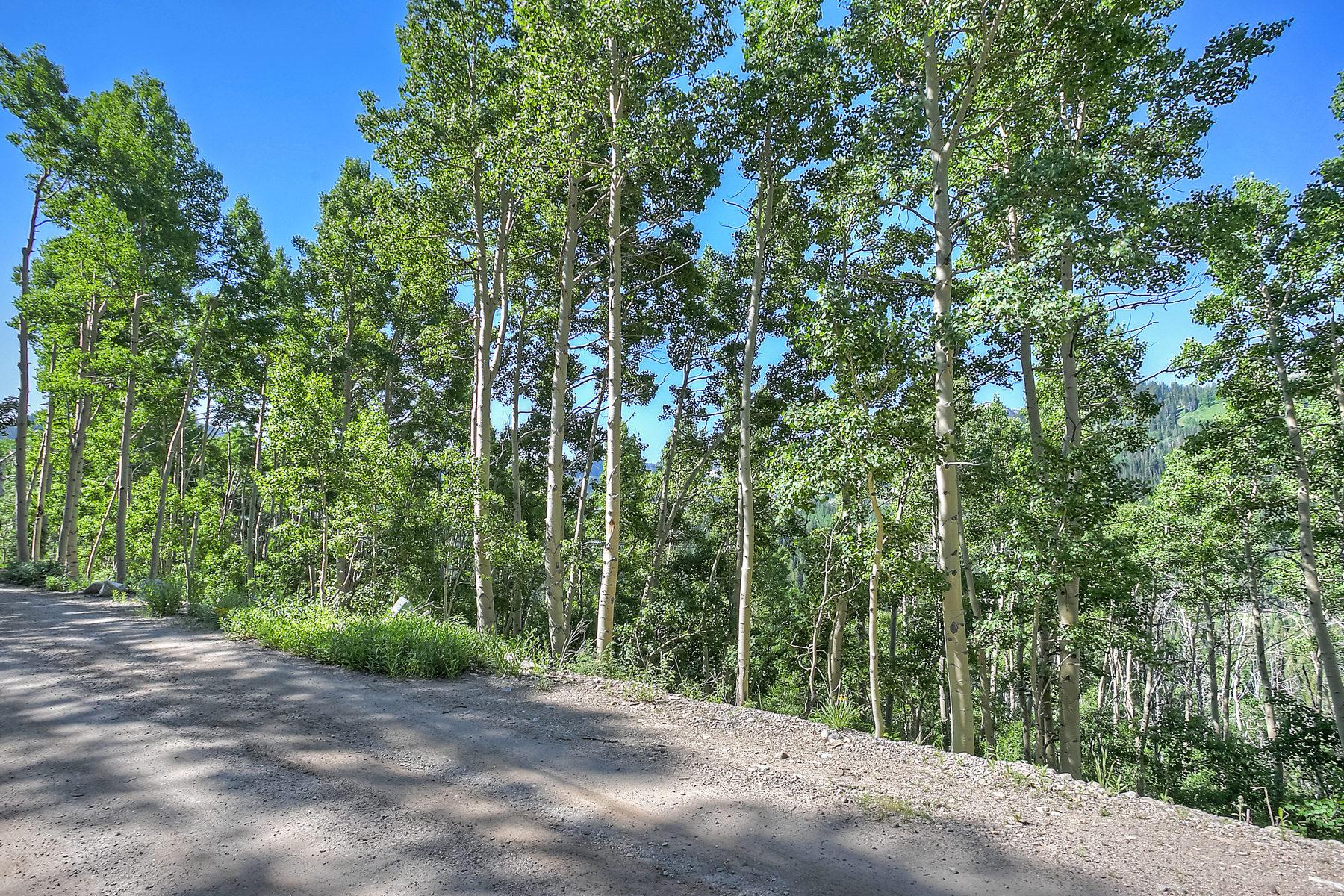 Land for Sale at Amazing Ski Resort Views 12442 Skyline View Ln Salt Lake City, Utah 84121 United States