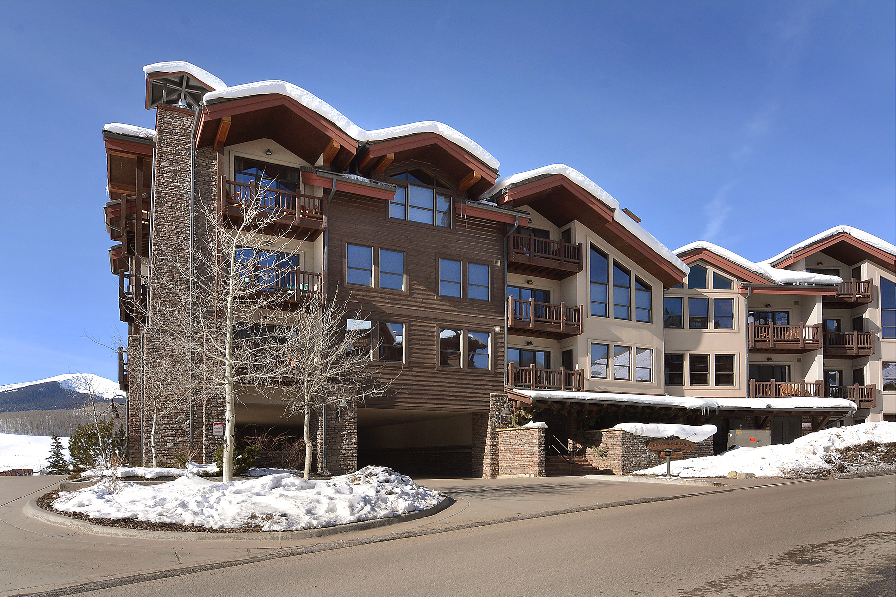 Copropriété pour l Vente à Walk to West Wall Lift 9 Hunter Hill Road Unit 204 Mount Crested Butte, Colorado, 81225 États-Unis