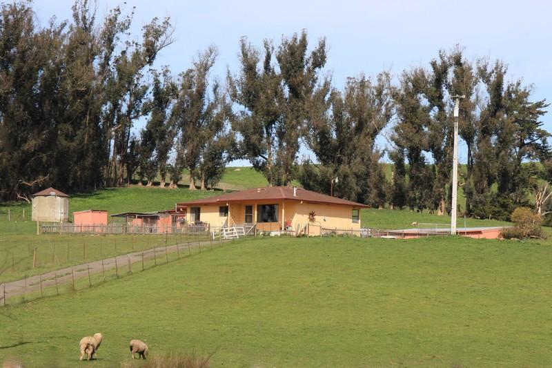 农场 / 牧场 / 种植园 为 销售 在 13990 Valley Ford Road Petaluma, 加利福尼亚州 94972 美国