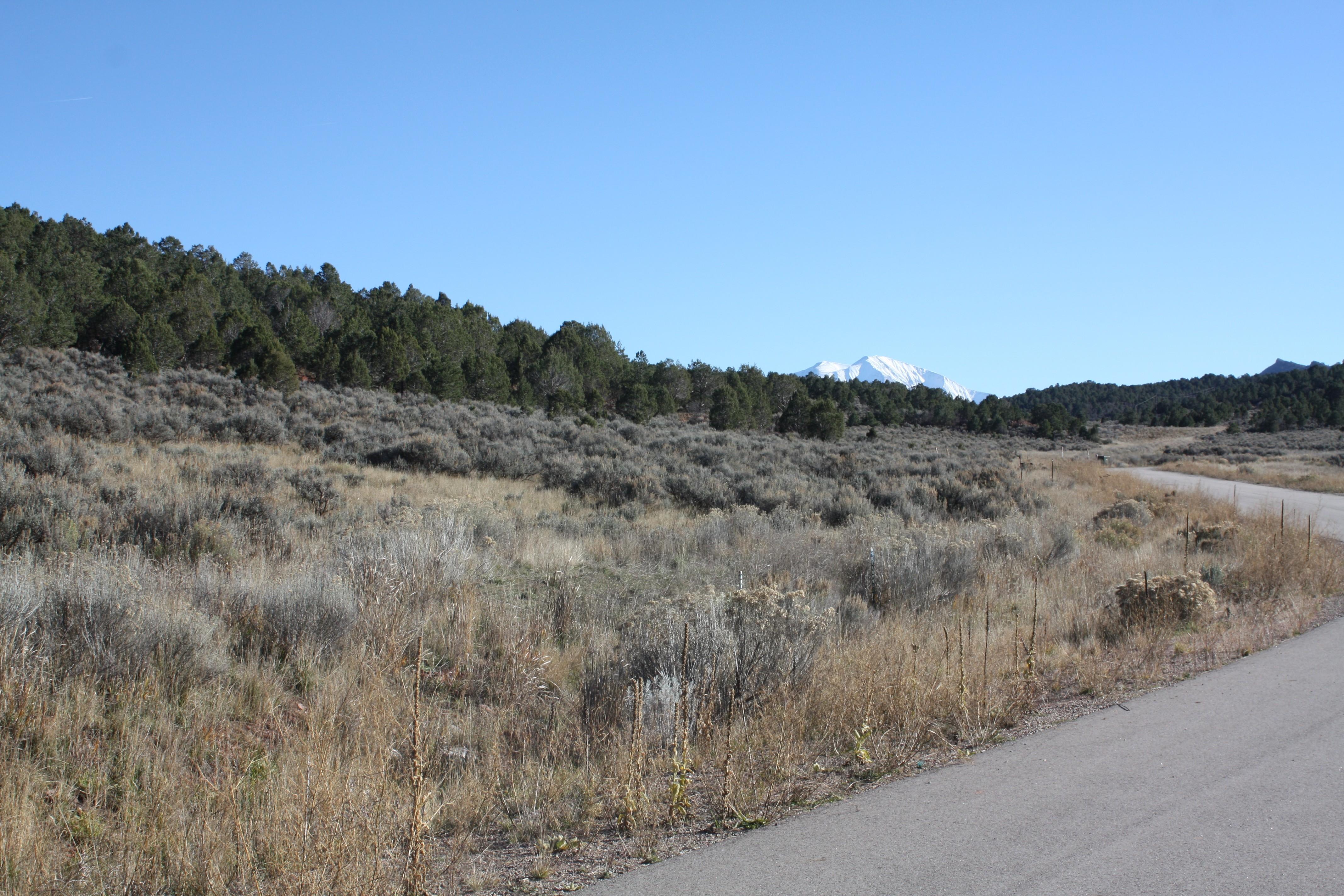 Land for Sale at Lot 60 Springridge Reserve Lot 60 Hidden Valley Glenwood Springs, Colorado, 81601 United States