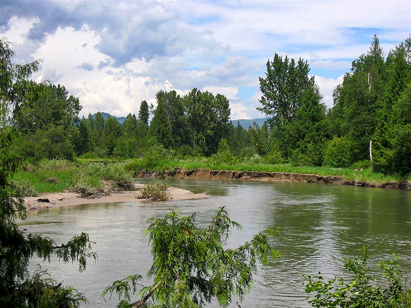 Land for Sale at 22 Ares with Pack River Flowing Through it NNA N Center Valley Road Sandpoint, Idaho, 83864 United States