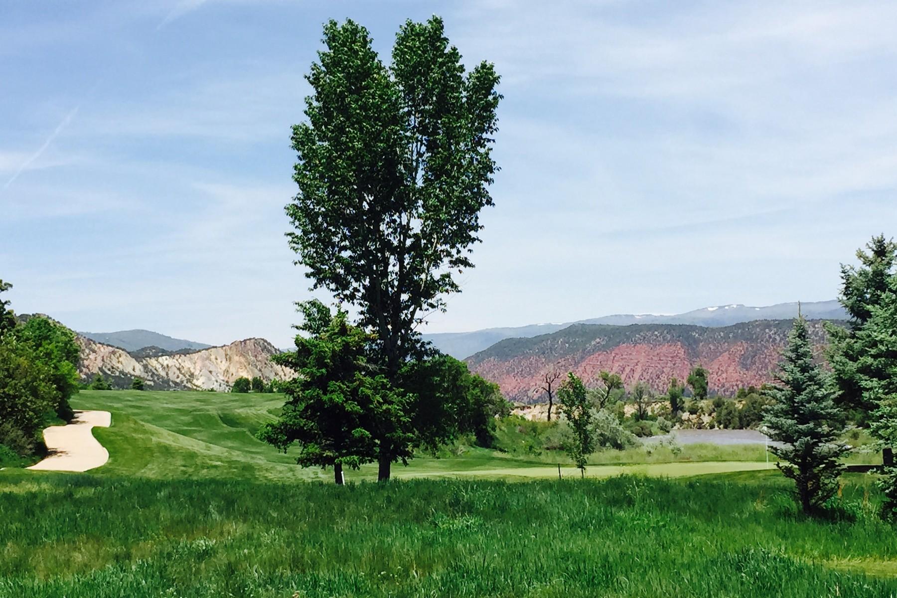 Terrain pour l Vente à Alex Revana CV-3 131 River Glen Carbondale, Colorado 81623 États-Unis