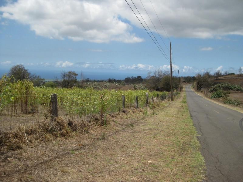 Terrain pour l Vente à 14 Lower Kula Rd., Kula Kula, Hawaii 96790 États-Unis