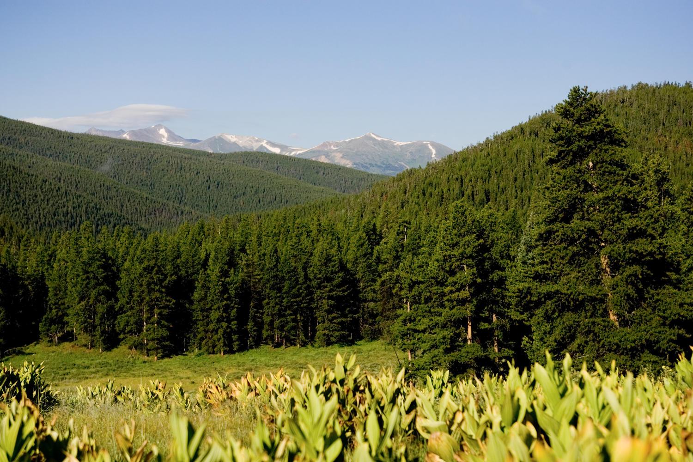 Terrain pour l Vente à Muggins Gulch 114 Bergen Trail Breckenridge, Colorado, 80424 États-Unis